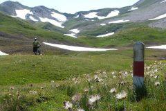 Pfosten markieren den Wegzum Saflischpass