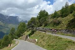 Rennradler fahren hoch zum Passo Gavia