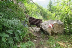 2018-08_121_Manfred_Transalp-Karnische-Alpen_Karnischer-Höhenweg