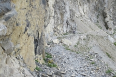 Kurz-vor-dem-Passo-di-Rocca-brancia
