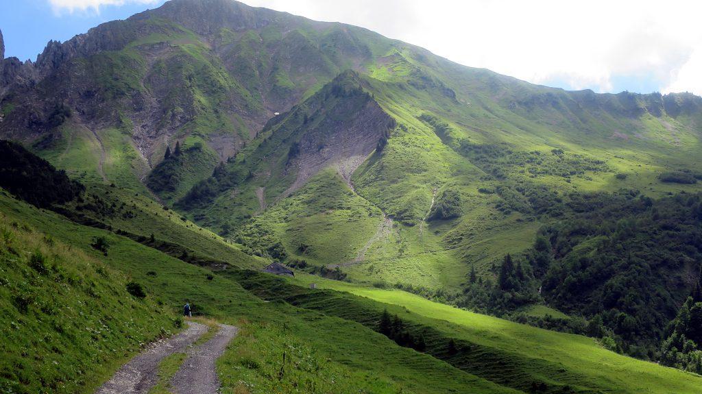 ein Weg führt duchr grüne Grasberge -Transalp vom Bodensee zum Comer See