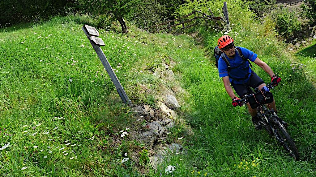 ein Biker auf einem Wiesentrail