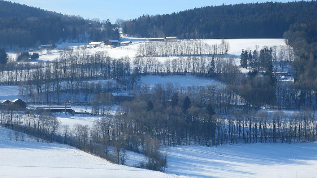 Schneelandschaft bei Kollnburg