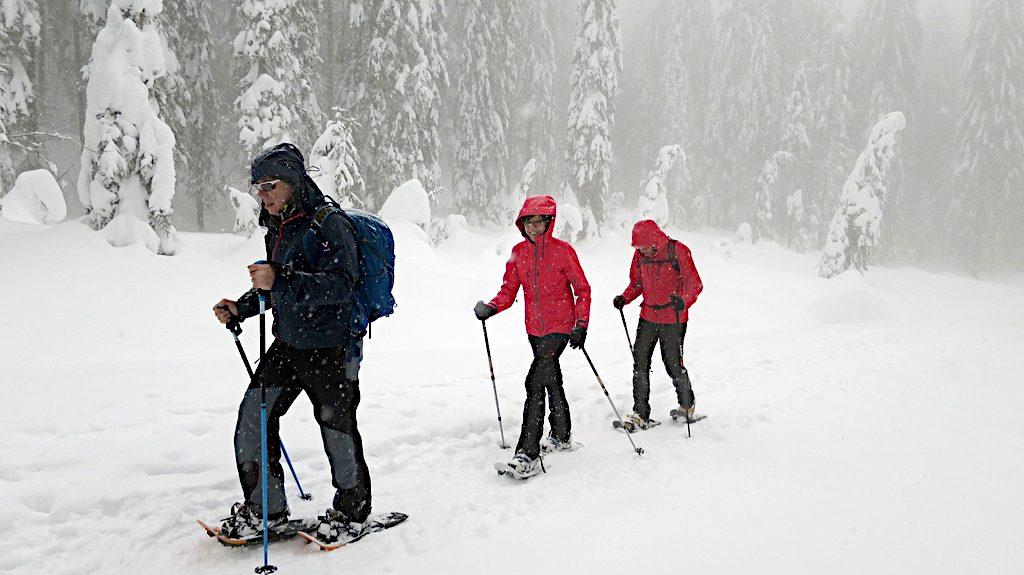 Schneeschuh Geher im verschneiten Wald