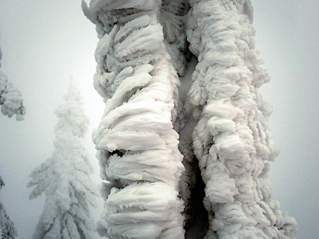 Das vollständig vereiste Gipfelkreuz am Kleinen Arber
