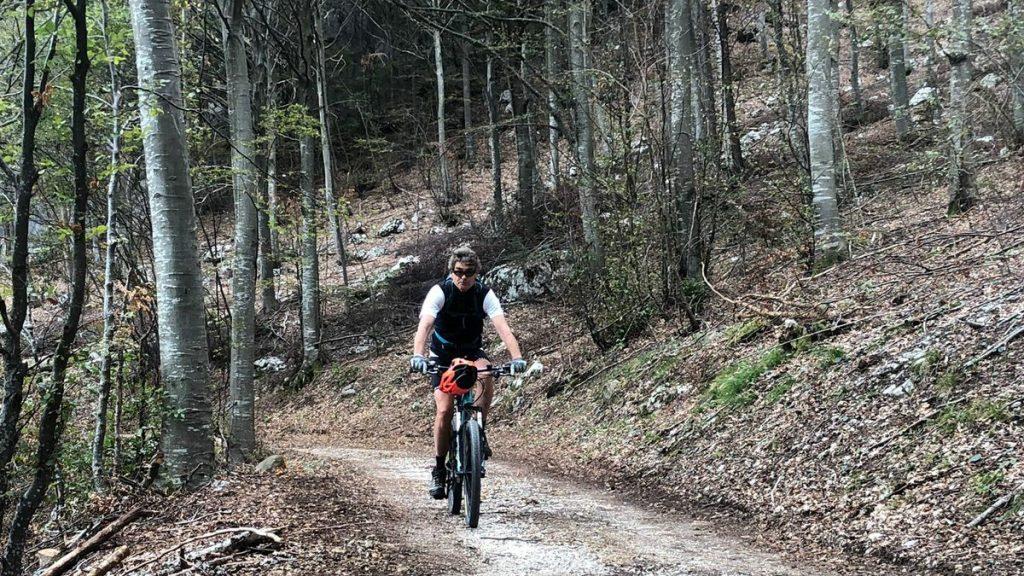 Ein Mountainbiker auf dem Weg zur Malga Zanga. Er ist umgeben vom typischen Wald im Gardasee Gebiet