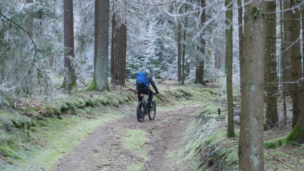 Beim Winterbiken inmitten vereister Bäume